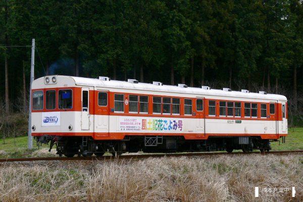 鹿島鉄道キハ600形 キハ602/2006-04-09 四箇村-常陸小川