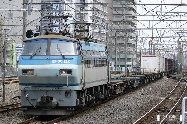 EF66形電気機関車 EF66 120