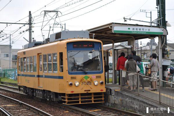東京都交通局7000形 7022 2012-04-07 都電雑司ヶ谷