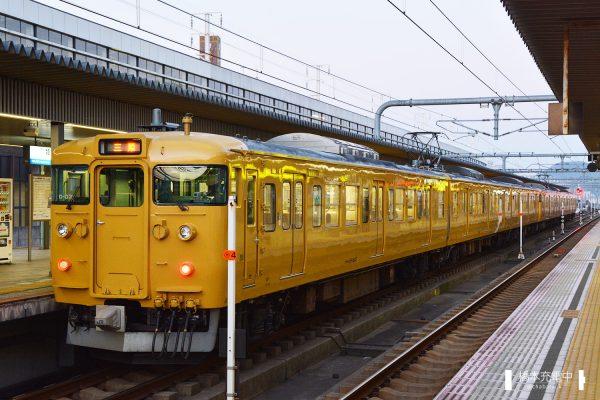 115系電車 D-03編成(岡山電車区)/2017-01-28 姫路 手前はクモハ115-1547